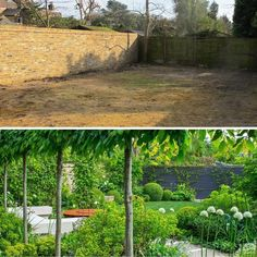 Charlotte Rowe Garden Design offers a full service garden design consultancy to clients seeking an outside space which is both beautiful and functional. Landscape Architecture, Landscape Design, Garden Design, Garden Makeover, Garden S, Garden Ideas, Charlotte, Australia, Landscaping