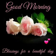 Good Morning! Blessings For A Beautiful Day. (With Lovely Rose Flowers)