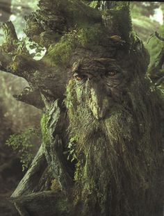 …my name is growing all the time, and I've lived a very long, long time; so my name is like a story.  -Treebeard
