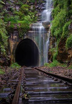 Tracks Walk HERE! #trains
