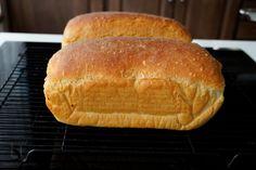Pâine simplă de casă - cea mai ușoară rețetă | Laura Laurențiu Easy Bread Recipes, Cooking Recipes, Convection Oven Recipes, Pastry And Bakery, How To Make Bread, Bread Baking, Mai, Breads, Toaster