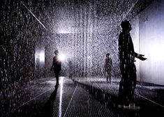 Located in The Curve gallery, Rain Room is a perpetual rain shower which lets visitors feel the moisture in the air and hear the sound of rain while remaining untouched by drops of water.