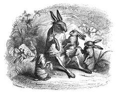 J.J. Grandville - Scènes de la vie privée et publique des animaux (1840-42) Histoire d'un lièvre