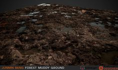 ArtStation - Forest Muddy Ground / Substance Designer, Junmin Bang