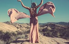 ❁ You belong somewhere you feel free. You belong among all the wildflowers. ❁