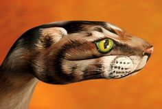Hand art taken to whole new level by Italian artist Guido Daniele who used body paint and his extreme imaginative skills to create these absolutely amazing Animal Paintings, Art Paintings, Hand Kunst, Examples Of Art, Like Animals, Hand Art, Italian Artist, Hand Painting Art, Animal Tattoos