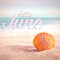 June Quotes, New Month Quotes, Happy Day Quotes, Hello May Quotes, Monthly Quotes, Good Morning Quotes, Seasons Months, Seasons Of The Year, Months In A Year
