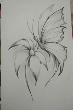 Credit Spreads In 2019 Drawings Pencil Drawings Of Flowers