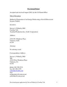 provisional patent application example - Google Search