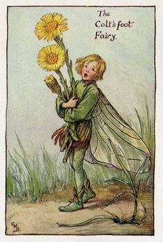 Bladeren Flower Fairy Vintage Print, c.1927 Cicely Mary Barker-boekillustratie plaat