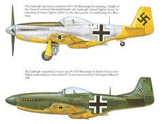 Luftwaffe P-51 - La Luftwaffe usò almeno 2 P-52 Mustang catturati per il 2. Staffel  del Versuchverband Oberbehfehlshaber der Luftwafffe per l'addestramento dei piloti che dovevano combattere contro i Mustang.