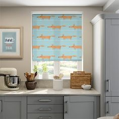Kitchen Blinds, Mr Fox, Mo S, Roller Blinds, Curtains With Blinds, Baby Boy Nurseries, Blue Backgrounds, The Originals, Bedroom