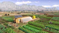 ✔ Un contenedor de carga con lo necesario para montar una granja solar para alimentar a 150 personas