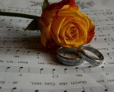 Rosen mit Ringe
