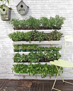 Gutter herb garden. Step by step - how to: diy-enthusiasts.com