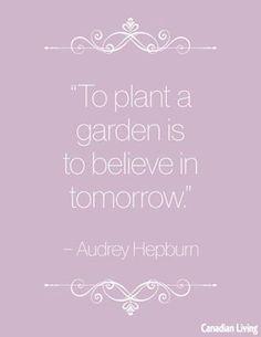 Planter un jardin C'est croire au lendemain