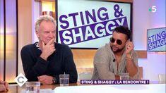 VIDEO /// Sting & Shaggy / la rencontre