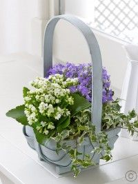 Send flower gifts in all counties including, Dublin, Cork and Galway with Flowers. We have wonderful collection of flowers available for same day and ne Best Flower Delivery, Online Flower Delivery, Flower Delivery Service, Funeral Flower Arrangements, Funeral Flowers, Valentines Flowers, Mothers Day Flowers, Anniversary Flowers