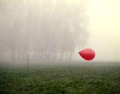 Horsemeat  photographic-energy:    The Red Balloon (by richardsmith155)