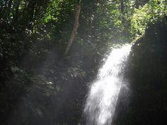 Brownsberg, Suriname