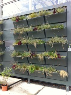 Verticaal tuinieren on pinterest tuin vertical gardens and edible garden - Outdoor tuinieren ...
