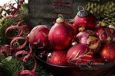 Red Christmas by Cass Peterson Greene on 500px