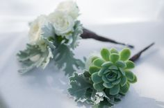 Image from http://www.thebridescafe.com/images/content/succulent%20shoot_contemporary_FKPHOTO-47.jpg.