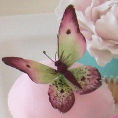 Gumpaste butterfly — Flowers