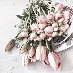 bouquet of tulips & rosesShop our floral (plant) case collection on our website! Shop link in bio! My Flower, Fresh Flowers, Pink Flowers, Beautiful Flowers, Pink Tulips, Cut Flowers, Prettiest Flowers, Dried Flowers, No Rain