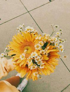 Daisies and sunflower - Pflanzen Aesthetic Backgrounds, Aesthetic Iphone Wallpaper, Aesthetic Wallpapers, My Flower, Beautiful Flowers, Flower Aesthetic, Spring Aesthetic, Boho Aesthetic, Aesthetic Yellow