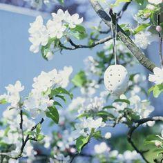 Easter Egg on Flowering Branch : Custom Wall Decals, Wall Decal Art, and Wall Decal Murals | WallMonkeys.com