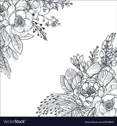 Illustration about Floral backgrounds with hand drawn flowers and plants. Monochrome illustration in sketch style. Illustration of elegant, garden, flower - 86030080 Flower Art Drawing, Flower Line Drawings, Floral Drawing, Illustration Blume, Illustration Sketches, Floral Illustrations, Art Sketches, Background Drawing, Hand Drawn Flowers
