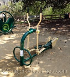 The park near my house has an awesome adult playground full of outdoor exercise equipment! I've tried out most of the machines. janissg