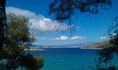 Forest and sea combined at Kanakia, Salamina..