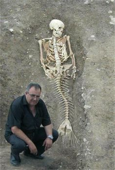 Photograph shows a mermaid skeleton found in Bulgaria?