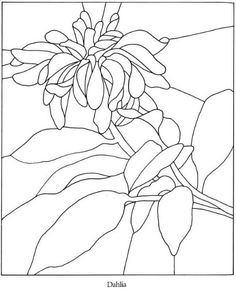 coloring pages :: 279421-054.jpg image by tharens - Photobucket