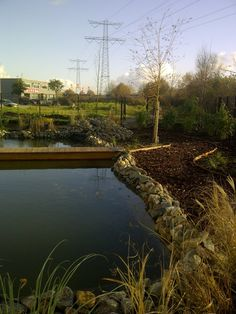 Meer dan 1000 idee n over tuin brug op pinterest tuinieren droge rivierbedding en japanse tuinen - Foto droge tuin ...
