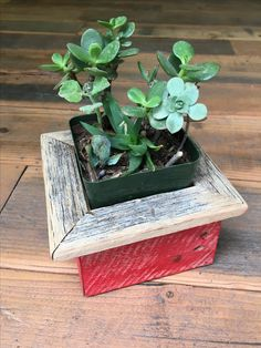 """Rustic reclaimed wood planter boxes!   The perfect addition to any home, garden, or office space! These make wonderful gifts and look adorable with planted succulents. All of our boxes are made with reclaimed wood, taken from deconstructed barns & fencing from around the country. We make every effort to be a completely sustainable business and love the idea of bringing life back into this old wood but planting greenery within it.  ● Small/Medium Box: 4.5"""" L x 4.5"""" W x 3.5"""" H, Flat top: 1""""… Succulent Planter Diy, Wood Planter Box, Wood Planters, Succulents, Succulent Boxes, Rustic Barn, Barn Wood, Old Wood, Greenery"""