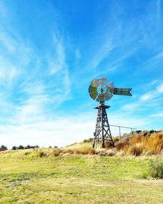 Greetings from Texas! Just admiring some windmills over here. // Tuulimyllyt ovat länkkäreiden vakiokamaa mutta tajusin vasta täällä  mihin niitä Teksasissa käytetään: siinä missä eurooppalaiset jauhoivat tuulimyllyillä jauhot teksasilaiset nostavat vettä syvistä kaivoista muuten kuivalla preerialla.  #LiveLoveLubbock #Texas #visittexas #windmill #tuulimylly #praerie #preeria #travel #matkalla #reissu #mondolöytö #ig_travel #igtravelthursday #työmatka #maisema (via Instagram)