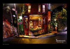 Santropol Vacation Ideas, Montreal, Adventure Time, Finn The Human