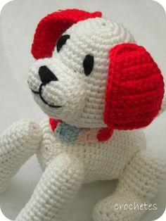Perrito blanco con collar multicolor