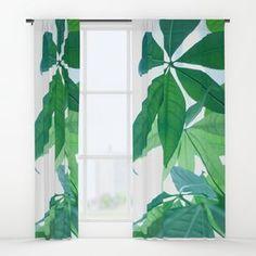 Pachira aquatica #1 #decor #art #society6 Window Curtains by Anita's & Bella's Art | Society6
