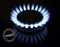 Natural Gas futures plunged by more than 3 per cent in the domestic market on Monday as investors and speculators exited