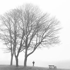 Lovely foggy morning at Kastellet (The Citadel)  One of my favorite places to run in Copenhagen.
