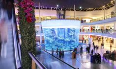 Gigantic aquarium opens in shopping mall with 3,000 fish, 264,000 gallons of water and the strength to withstand earthquakes #DailyMail