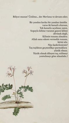 Islamic Pictures, Sufi, Meaningful Words, Galaxy Wallpaper, Islamic Quotes, Cool Words, Instagram Story, Quotations, Prayers