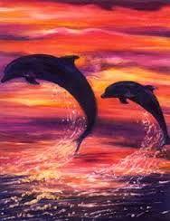 Image result for common bottlenose dolphin
