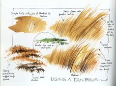 22284-Grass_how_to_paint1.jpg 500×374 pixels
