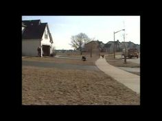 This Dog is Patiently Waiting for the School Bus. Watch What He Does When it Arrives!