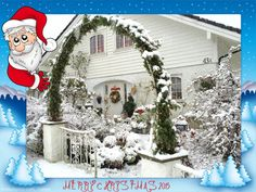 In my Garden Margeritten by Inger Johanne 12/2015 :) Merry Christmas Everyone!!